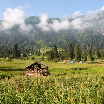 5 Things To Do In Kashmir
